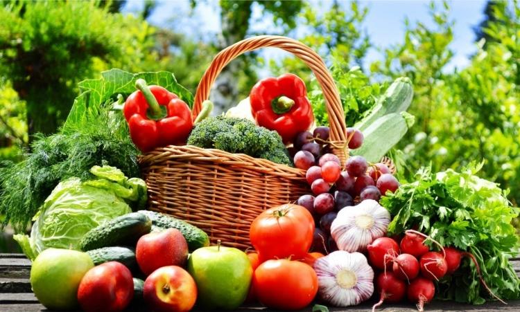 Verduras/Tubercules/Hortaliças/Legumes